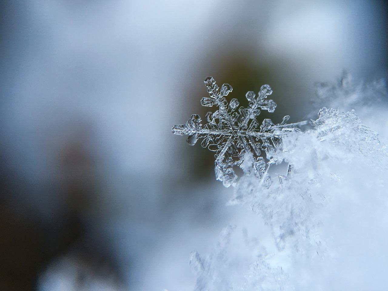 冬至。太陽が山羊座に移動【今日の星回りを仕事に活かす方法】