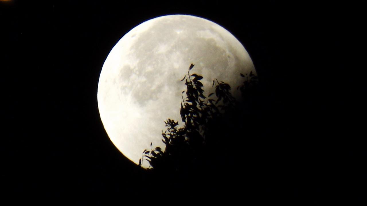 獅子座月食